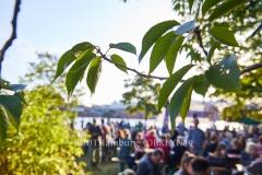 14.09.2019:  das dritte OSTERBROOKLYN – Festival auf dem Loeschplatz im Osterbrookviertel